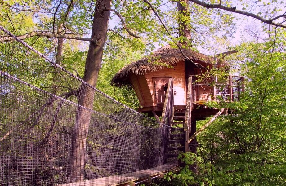 cabane-arbres-insolite