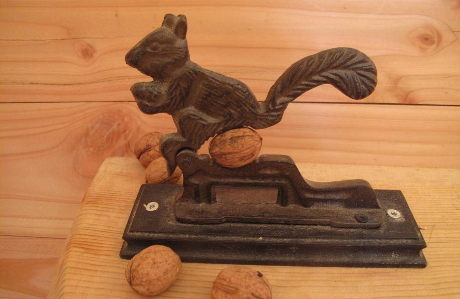 cabane-dans-les-abres-ecureuils-noisette