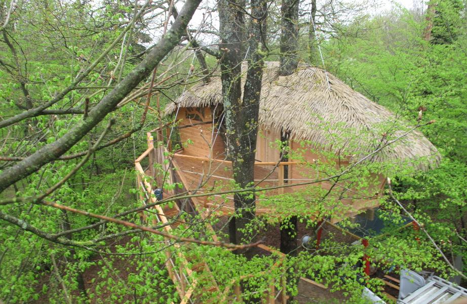 cabane-dans-les-abres-ecureuils-terrasse