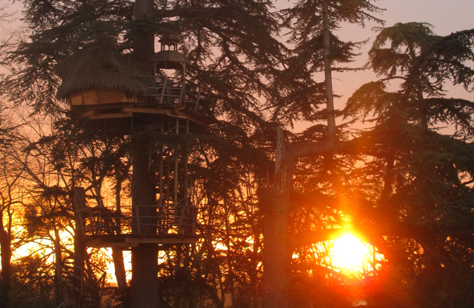 cabane-dans-les-arbres-soleil-couchant