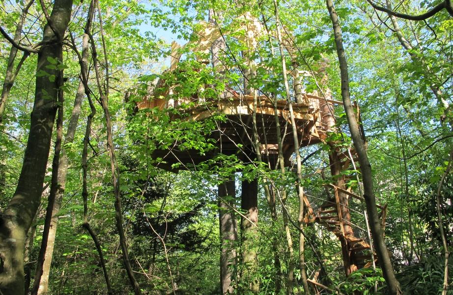 cabanes-arbres-foret