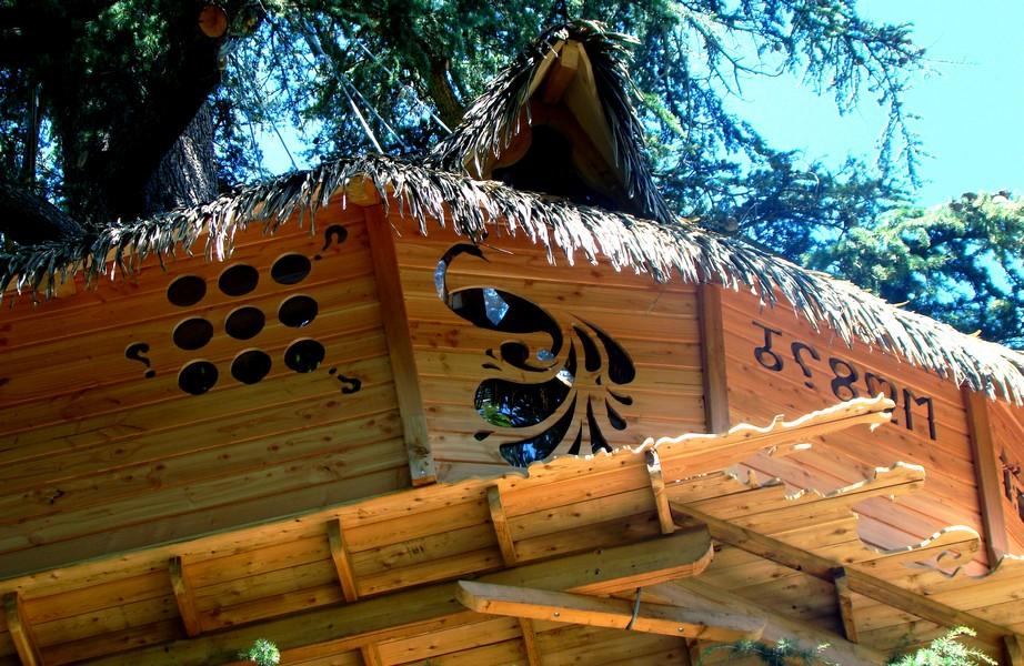 cabanes-arbres-nuit