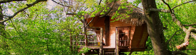 Tree Houses France Tree Houses History
