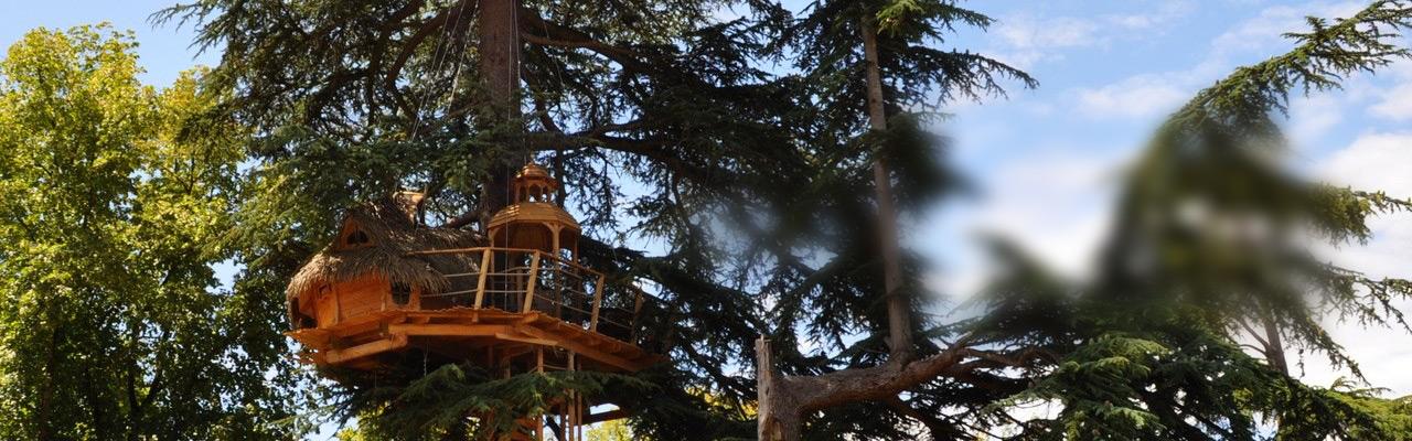 cabane-arbres-couple