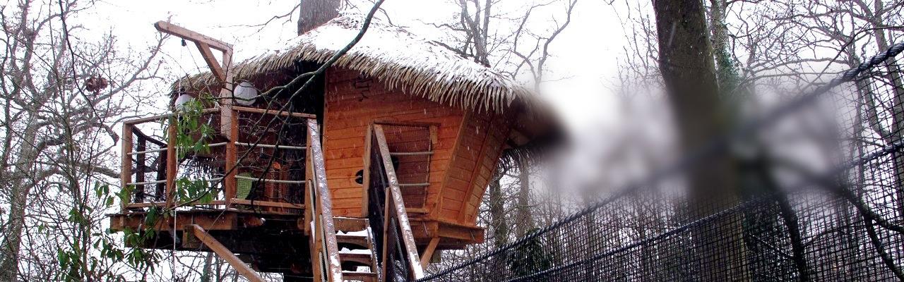 cabane-arbres-hiver